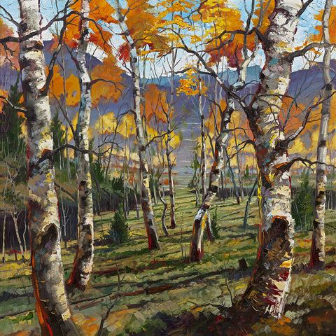 """Into the Aspen Valley"" 012"