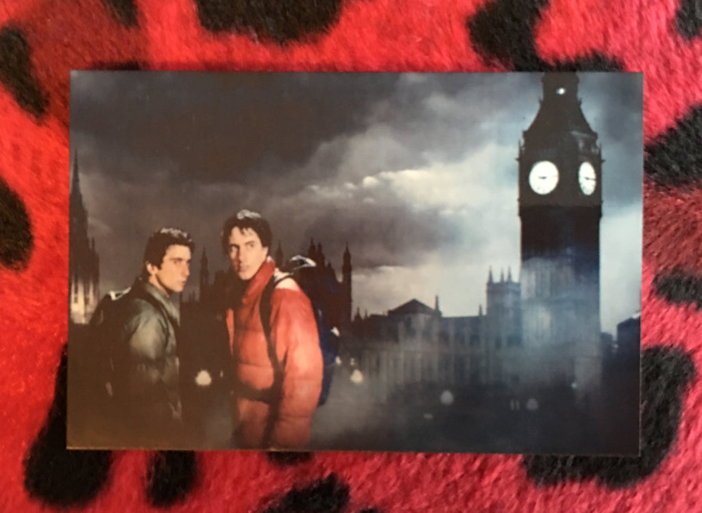 An American Werewolf in London Magnet