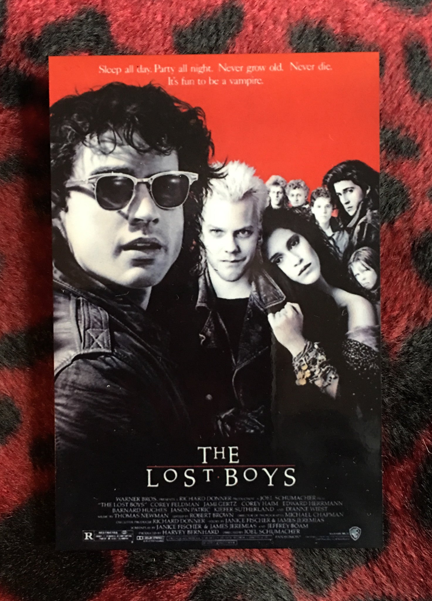 The Lost Boys Magnet