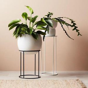 Lotus Pot Stand - Short White