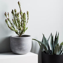 Load image into Gallery viewer, Maxi Planter - Coal