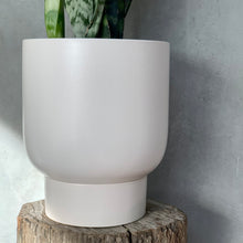 Load image into Gallery viewer, Finch Pot - Medium - Soft White