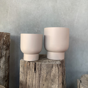 Finch Pot - Medium - Ash
