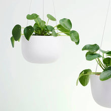 Load image into Gallery viewer, Raw Earth Hanging Planter