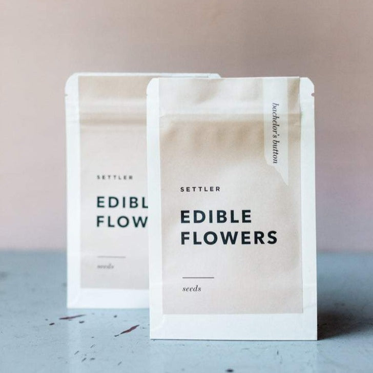 Edible Flower Seeds - Cornflower Bachelor's Button