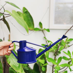 Haws Plastic Watering Can - 700ml - Navy