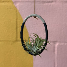 Load image into Gallery viewer, Alhoka Airplant Ring