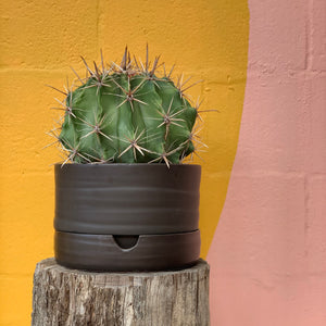 Mid Matt Black Ceramic Self Watering Pot