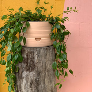 Mid Burnt Coral Ceramic Self Watering Pot
