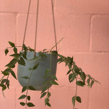 Load image into Gallery viewer, Cade Hanging Pot - Small - Sage