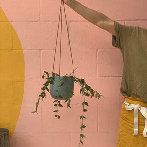 Cade Hanging Pot - Small - Sage