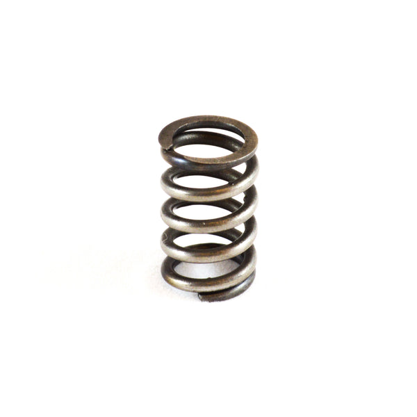 [20] Clutch Spring - 3D Motorsport and Engineering, LLC