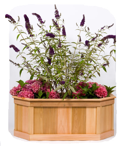 Large Stretched 6 Sided Cedar Planter