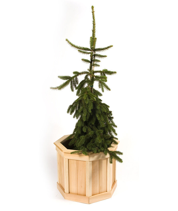 Small Octagonal Cedar Planter