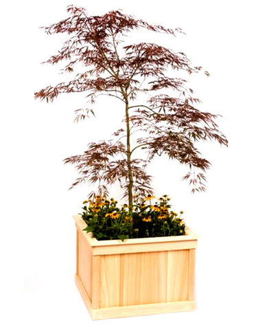 Small Rectangular Cedar Planter
