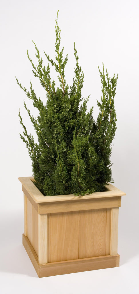 Small Square Cedar Planter