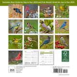 "Songbirds Mini Wall Calendar 2021, 7"" x 7"""