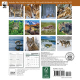 "WWF Wolves Mini Wall Calendar 2021, 7"" x 7"""