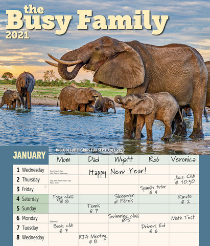 Busy Family Wall Calendar 2021, Monthly January-December 12'' x 14""