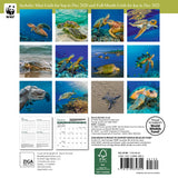 "WWF Sea Turtles Mini Wall Calendar 2021, 7"" x 7"""