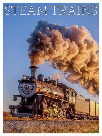 Norfolk & Wester No. 382 Steam Trains 18 x 24 inch poster