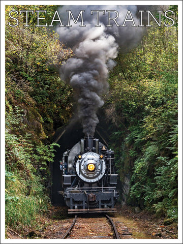Crossett Western No. 10 Steam Trains 18 x 24 inch poster