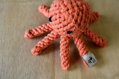 Olly the octopus rope toy