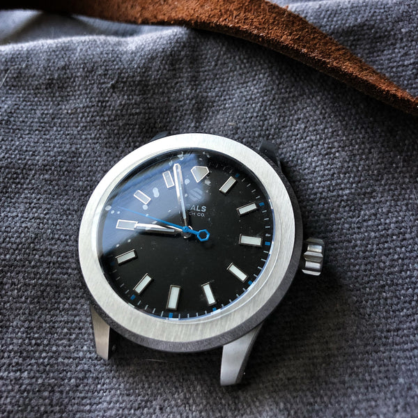 Dark Seal Automatic Sport Watch With Fixed Bezel