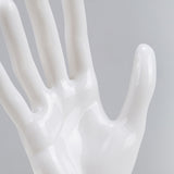 DS-188 Tall Glossy White Female Glove, Rings, and Jewelry Display Hand - DisplayImporter