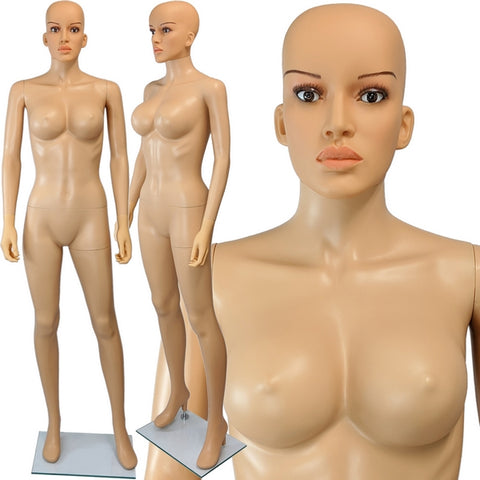 MN-445A Plastic Busty Ladies Full Size Mannequin with Removable Realistic Head - DisplayImporter