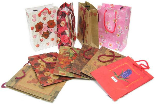 "BG-037 Euro-Handle Paper Shopping Bags - 9.5"" x 8""  - DisplayImporter.com - 1"