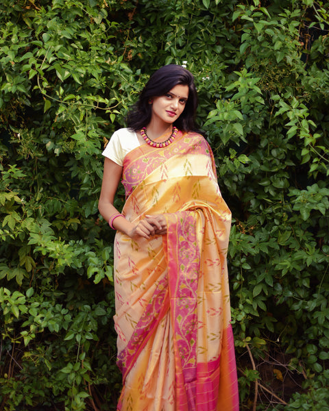 Cream Shaded Floral Baby Pink Pallu Patola Silk Saree-PPS0RE-038