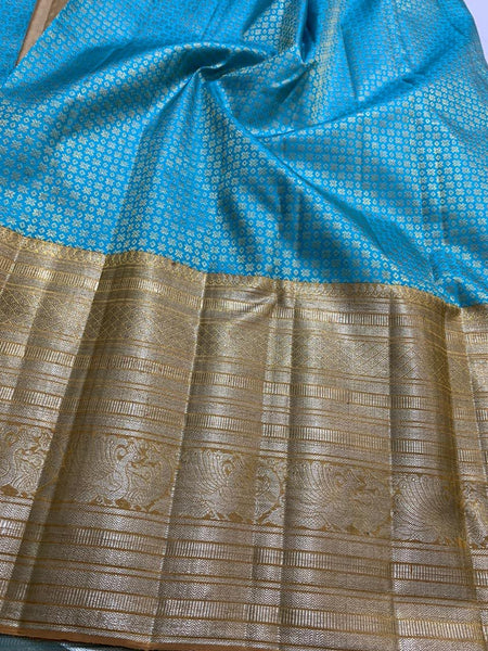 Sky Blue With Golden Border Kancheepuram Pure Silk Saree
