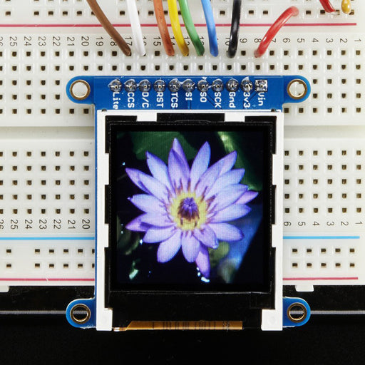 A product image of Adafruit 1.44