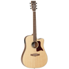 Tanglewood 15ASCE Sundance Performance Pro Dreadnought w/Hardcase