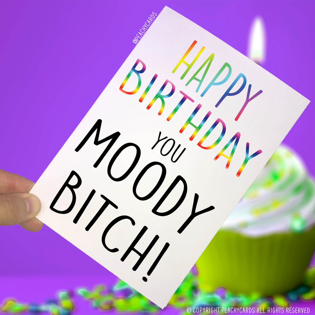 Happy Birthday Cards You Moody Bitch Card Funny