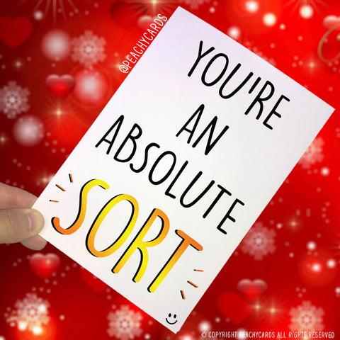 Funny Greeting Cards Husband Boyfriend Wife Girlfriend Novelty Banter Adult Humour You're An Absolute Sort Best Friend MILF DILF Joke PC361