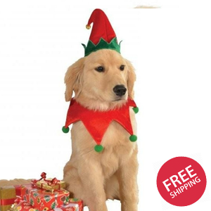 Elf Hat with Bell Collar Pet Christmas Costume