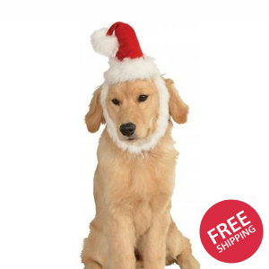 Red Santa Hat With Beard Pet Christmas Costume
