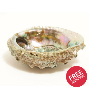 Smudge Ash Tray and Burner - Abalone shell - Large 5