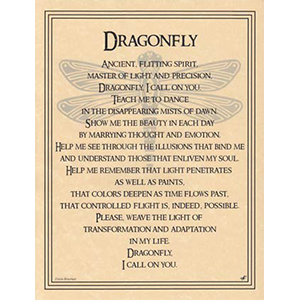 Dragonfly poster - Wiccan Place