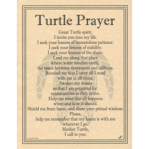 Turtle Prayer poster - Wiccan Place