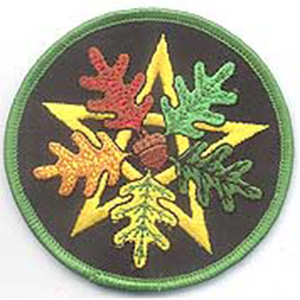 "Oak Leaf Pentagram iron-on patch 3"" - Wiccan Place"