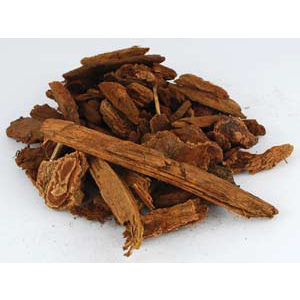 Jezebel Root pieces 1oz (Picea) - Wiccan Place