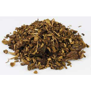 Yellowdock Root cut (Rumex crispus)