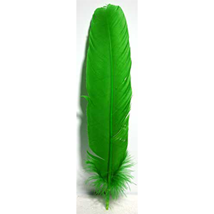 Green Feather 12