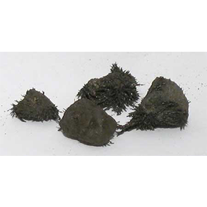 Natural Lodestones 1 Lb