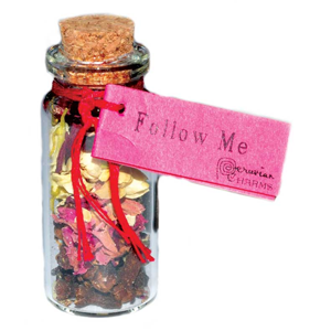 Follow Me Pocket Spell Bottles - Wiccan Place
