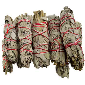 White Sage Smudge Sticks 12 pk 3 1/2