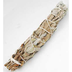 White Sage Smudge Stick 5